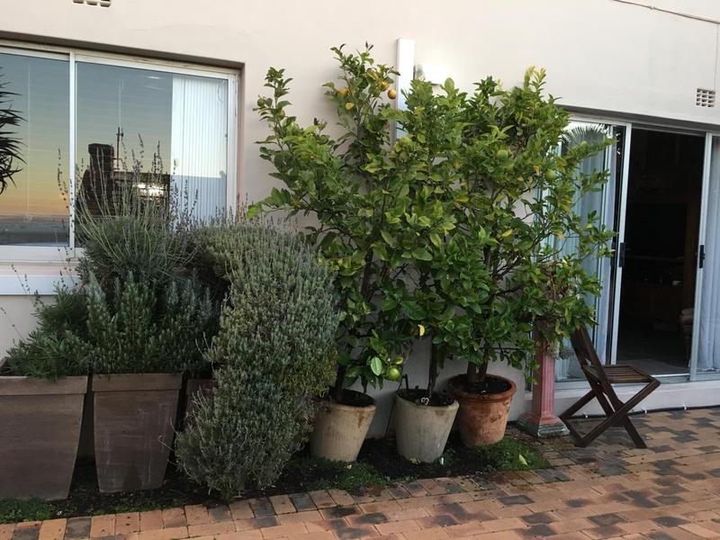 Property For Sale in Green Point, Cape Town 11